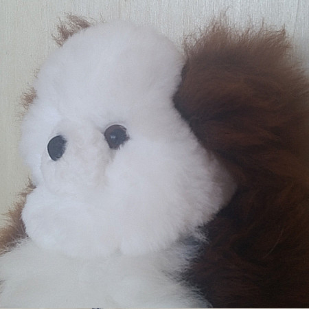 Adorable SnowChoc Teddy made with 100% alpaca fleece