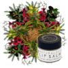 Zen&Tonic Lip Balm made with potent manuka honey, healing hemp and deeply moisturising olive oil.